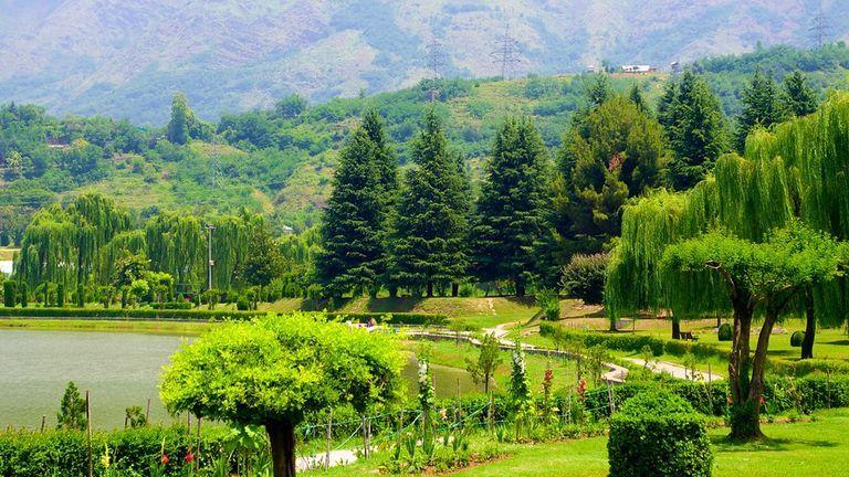 botanical-garden-in-srinagar-kashmir