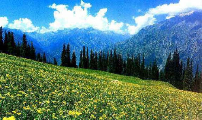 Yousmarg Kashmir Tourism Tour Packages